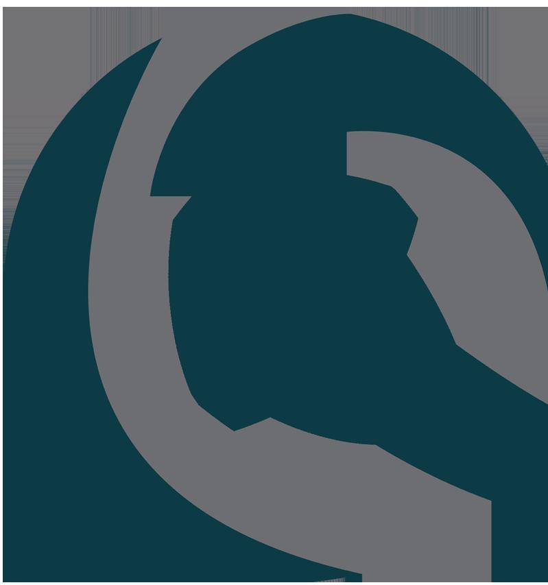 Logo Consultrain